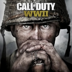Click image for larger version.  Name:COD_WWII.jpg Views:85 Size:23.2 KB ID:12107