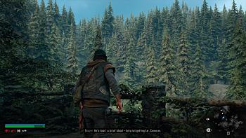 Click image for larger version.  Name:DAYS GONE_20190410082933.jpg Views:107 Size:945.0 KB ID:11671