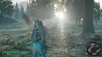 Click image for larger version.  Name:DAYS GONE_20190413181105.jpg Views:111 Size:470.5 KB ID:11673